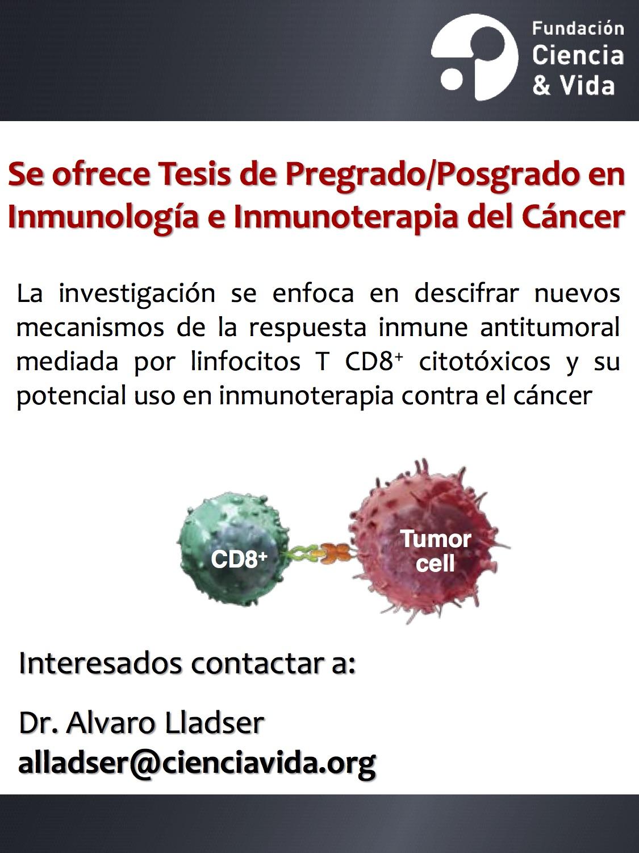 Oferta Tesis de Pregrado y Posgrado para proyecto de Inmunología eInmunoterapia del Cáncer graphic
