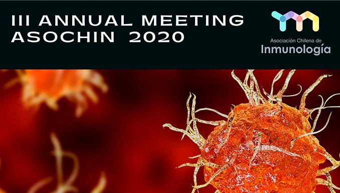 III Anual Meeting ASOCHIN 2020 graphic