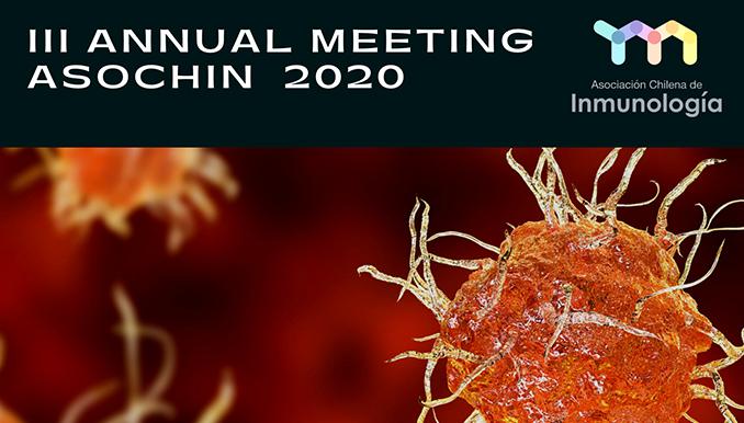 Resumen III Reunión Anual ASOCHIN 2020 graphic